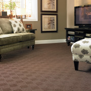 carpet-family-room